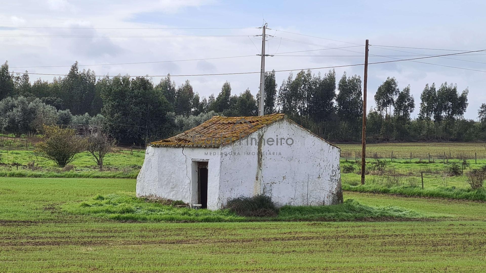 Quinta em Vale de Água  - Santiago Do Cacém, UDF De São Domingos E Vale De Água